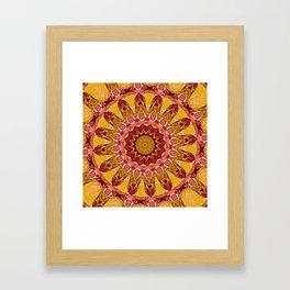 The goldish mandala Framed Art Print