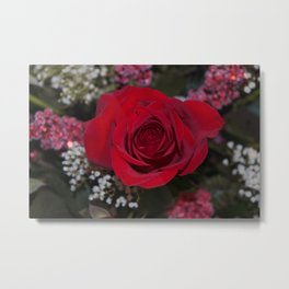 Valentine's Day Roses 7 Metal Print