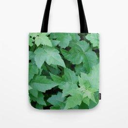 Settled Tote Bag