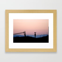 Deer at Dawn Framed Art Print