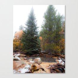 Autumn Morning Fog Canvas Print