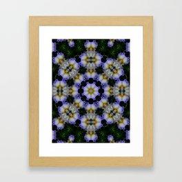 Mandala ~ Iris 94-E2 Framed Art Print