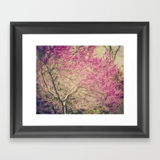 Magenta  Framed Art Print