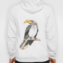 Southern Yellow-Billed Hornbill - Colored Pencil Hoody