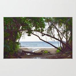 Playa Tamarindo Rug