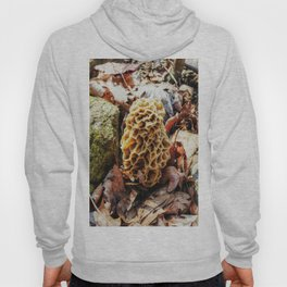 Morel Mushroom in the Wild Hoody