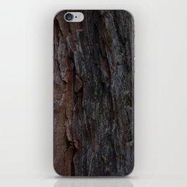 Kings Canyon Tree no.2 iPhone Skin