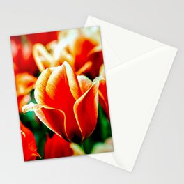 Magnificient Red Tulips Stationery Cards