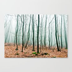 between times Canvas Print