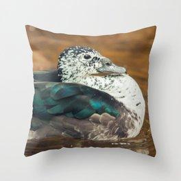 Knob-billed Duck Throw Pillow