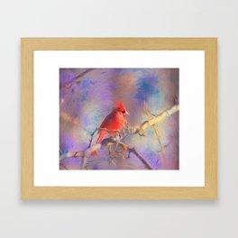 Lovely Cardinal Framed Art Print