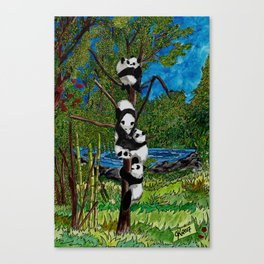 Six Baby Pandas in a Tree Canvas Print