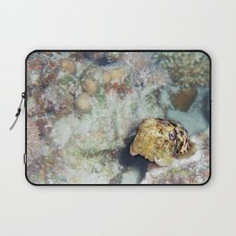 Baby Cuttlefish and Hard Coral Laptop Sleeve
