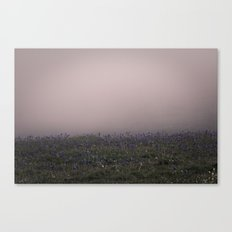 mysterious fog Canvas Print