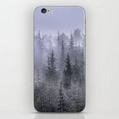 Looking for...... iPhone & iPod Skin