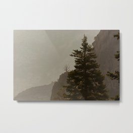 Skeletal Tree Rock Canyon Utah Mountain Landscape Metal Print