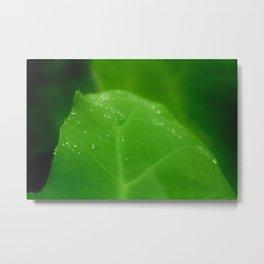 dew process Metal Print