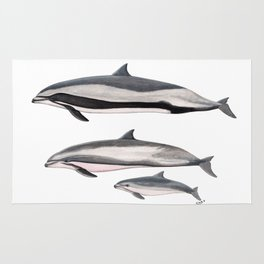 Fraser´s dolphin Rug