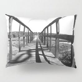 Theodore Roosevelt Beach Path Pillow Sham