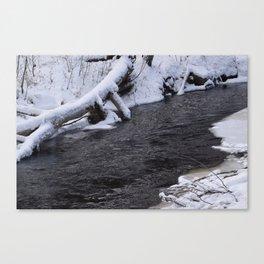 Snowy river Canvas Print