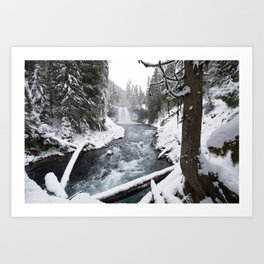 The Wild McKenzie River Waterfall - Nature Photography Art Print