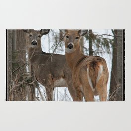 White-Tailed Deer in Winter Rug