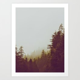 Olive Green Sepia Misty Pine Forest Landscape Photography Parallax Trees Art Print