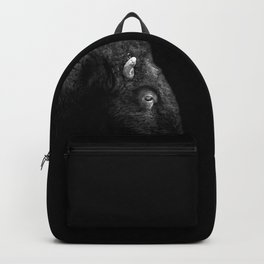 BW Bison Backpack