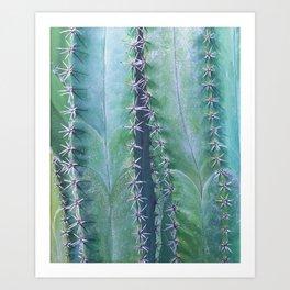 Columnar Cacti Art Print