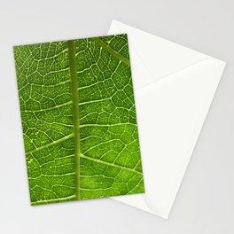 Fig Leaf Stationery Cards