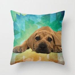 Boerboel puppy - South African Mastiff Throw Pillow