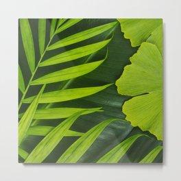 Fresh Green Tropical Palm and Gingko Leaf Metal Print
