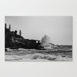 POWERFUL NATURE Canvas Print