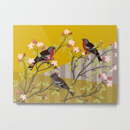 chaffinches in the cherry tree Metal Print