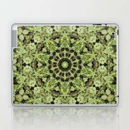 Mariguandala Laptop & iPad Skin