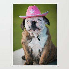 Cowgirl Puppy Poster