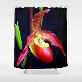 Phrag - mentation Shower Curtain
