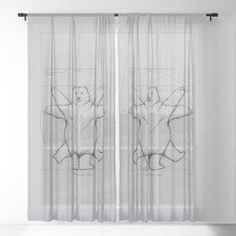 Vitruvian Bear Grey Sheer Curtain