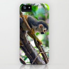 Squirrel monkey in a branch iPhone Case