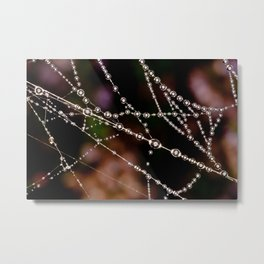 Spider's web with dew drops on it Metal Print
