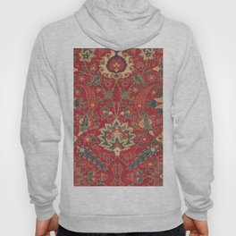 Indian Trellis I // 17th Century Ornate Medallion Red Blue Green Flowers Leaf Colorful Rug Pattern Hoody