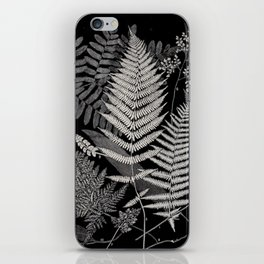 Botanical Ferns iPhone Skin