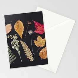 Plants + Leaves Stationery Cards