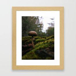 Living Dream Framed Art Print