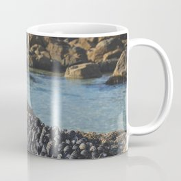 Muscles on a Rock, St Ives Cornwall Coffee Mug