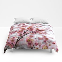 The First Bloom Comforters