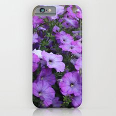 Petunias Slim Case iPhone 6s