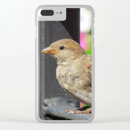 Sparrow Morning Clear iPhone Case