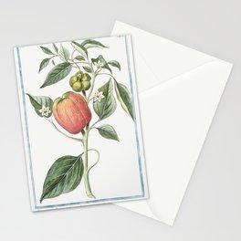 Capsicum fructu subrotundo ventricoso dulci in summitate tetragono Peperoni di Spagna grandi e dolci Stationery Cards