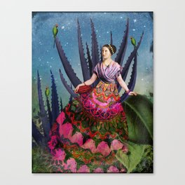 Blue Agave and Cacao Canvas Print